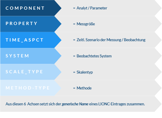 sechsachsige Klassifizierung LOINC Eintrag